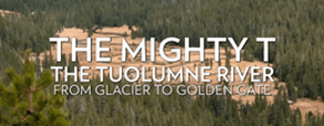 The Mighty T: From Glacier to Golden Gate